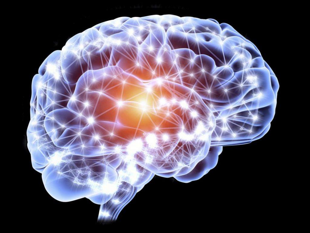 cuidado del cerebro